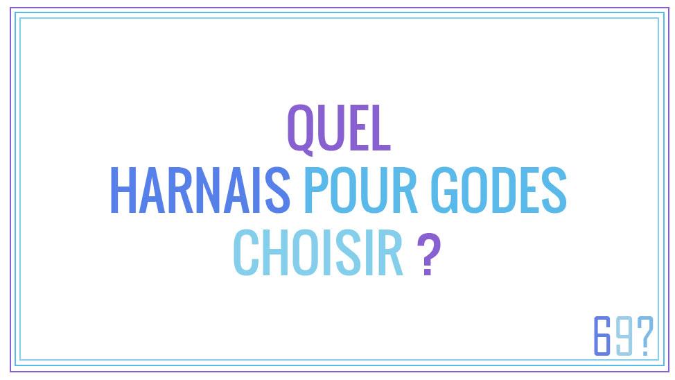 Quel harnais pour godes choisir ?